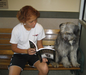 Child reading to dog at the Washington Animal Rescue League